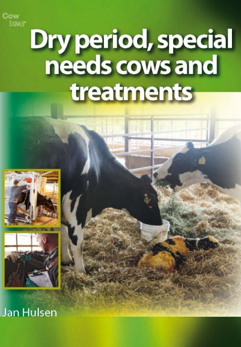 Dry Period, Special Needs Cows And Treatments
