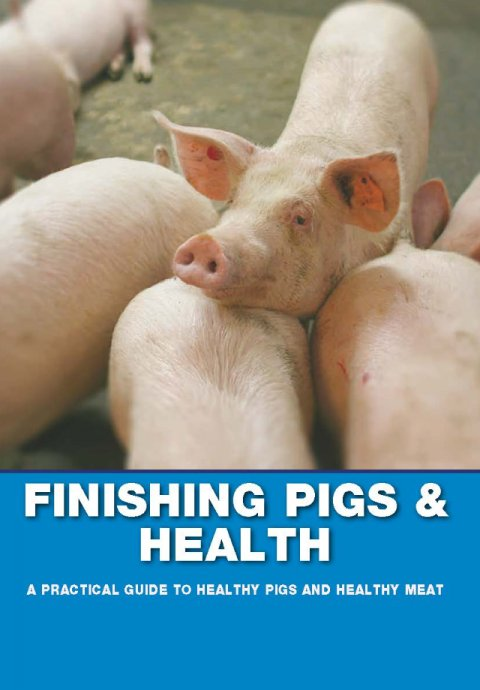 Finishing Pigs & Health