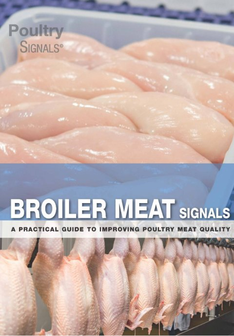 Broiler Meat Signals