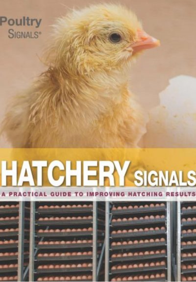 Hatchery Signals - COMING SOON