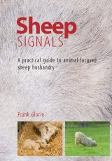 Sheep Signals by Frank Glorie
