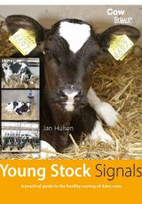 Young Stock Signals by Jan Huslen